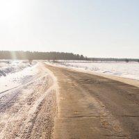 Зимняя дорога :: Александр Шилов