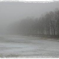 Красный пруд в тумане :: Lesya Vi