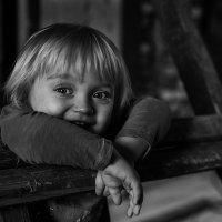 Домовёнок :: Сергей Гойшик