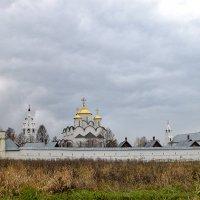 Покровский монастырь :: Galina