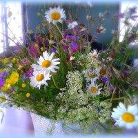 Скромный букет цветов полевых :: Людмила Богданова (Скачко)