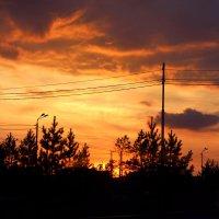 Такой вот закат. :: Альбина Васильева