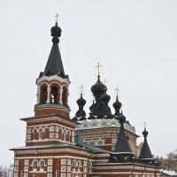 Славные купола. :: Андрей Синицын