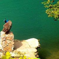 Голубая речка :: Владимир Болдырев