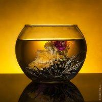 Чайный цвет :: Ирина Барышникова