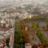 Париж :: Евгения Кирильченко