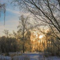 Первое весеннее утро. :: Алексей Масалов