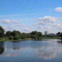 Городской пруд :: Alexander Borisovsky