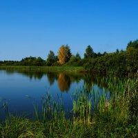 Деревня :: kolyeretka