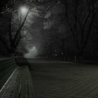 Туманный вечер в парке :: Виталий Павлов