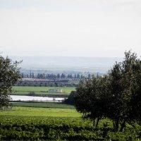 Загляни за горизонт :: Yana Fizazi