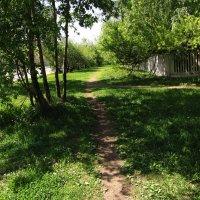 IMG_2078 - Когда Весна придет знаю! :: Андрей Лукьянов