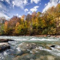 Река Белая, респ.Адыгея :: Геннадий Клевцов
