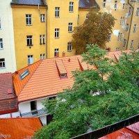Пражские крыши :: Денис Кораблёв