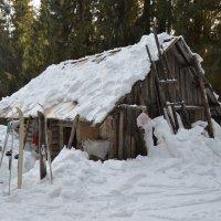 Занесенная снегом :: Дмитрий Стрельников