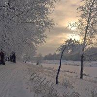 Зимнее солнце :: Любовь Потеряхина