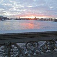 Нева на закате :: Елена