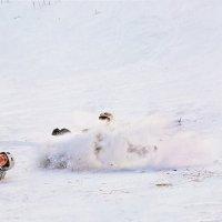 Сноуборд триптих :: Nn semonov_nn