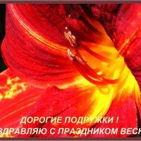 С ПРАЗДНИКОМ ВЕСНЫ ! :: Наталья Маркелова