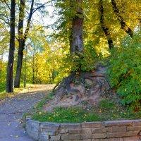 В Лопатинском саду :: Милешкин Владимир Алексеевич