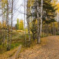 Осень в дендропарке :: Валентин Котляров