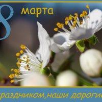 С праздником!!! :: Sergey Bagach