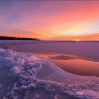 Мыс Осиновый. Южный берег Финского залива. :: Юрий