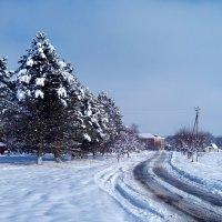 Зимняя дорога :: Наталья Дивинец