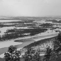 Чёрное и белое :: Дмитрий Арсеньев