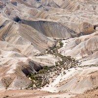 Нахаль Цин, Негев, Израиль :: Lmark