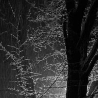 Снег идет :: Александр Корсиков