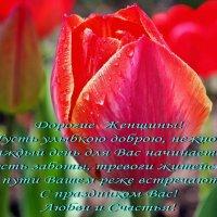 С Праздником, Дорогие Женщины ! :: Александр Резуненко