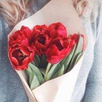 тюльпаны :: Yana S