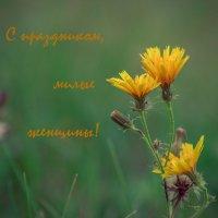 * :: Сергей Исаенко