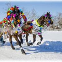 Проводы зимы. Русские традиции. :: Татьяна Титова