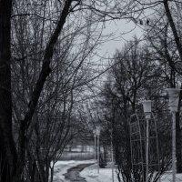 Поворот судьбы :: Алексей Соминский