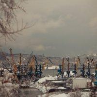 Торговый порт :: Dmitriy Andreev