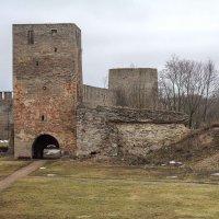 Набатная башня,Ивангородская крепость :: Слава