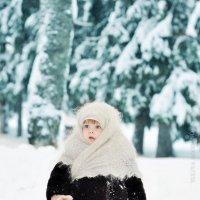Играй,гармонь!!! :: Юлия Богданова