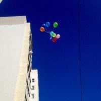 Ясное весеннее небо :: Ксения Халяпина