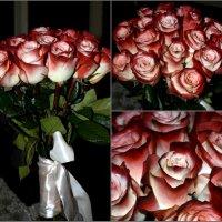 приятности 8го марта! :: Елена Лагутина