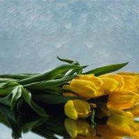 Цветы в подарок :: Ирина Приходько