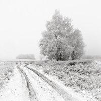 Зимний пейзаж :: Андрий Майковский