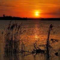 На закате :: sergej-smv