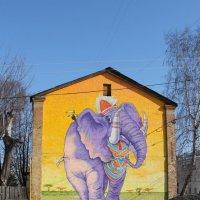дом работников цирка :: Анна -