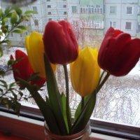 8 Марта :: Татьяна Агеева