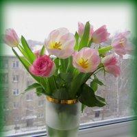 Про весенний праздник . :: Мила Бовкун