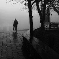 Дождливый  пейзаж. :: Валерия  Полещикова