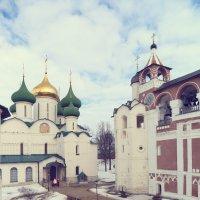 Суздаль, Спасо-Евфимиев монастырь :: Larisa Ulanova