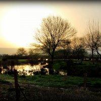 Рассвет в долине Хула :: Наталья Волкова